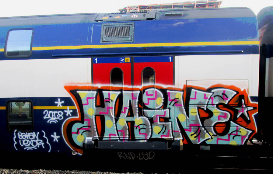 HAINE SBB train graffit zürich